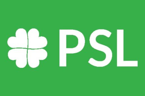 PSL ma program. Projekty ustaw ludowców.